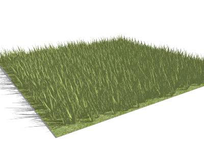 High-Poly Grass
