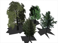 Plant Component Pack in Sketchup